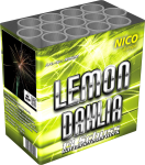 Nico Lemon Dahlia