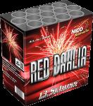 Nico Red Dahlia
